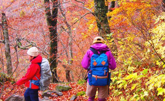 初心者が山登りや登山で気をつけるポイントをご紹介します。